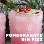 Pomegranate Gin Fizz