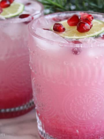 Pomegranate Gin Fizz Cocktail