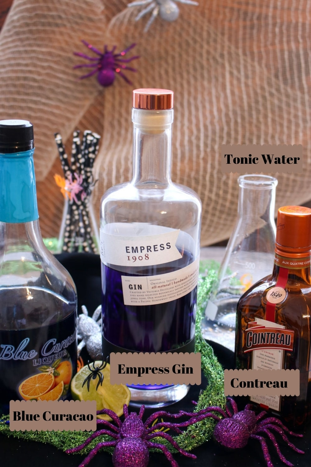 A shot of the spooky gin and tonic ingredients